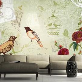 Fotótapéta Vintage birds