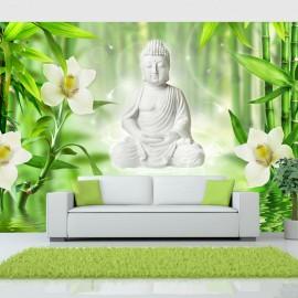Fotótapéta Buddha and nature