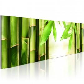 Kép Bamboo gate