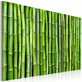 Kép Bamboo wall