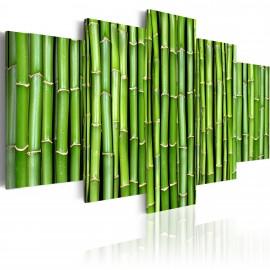 Kép Bamboo harmony and simplicity