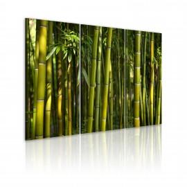 Kép Green bamboo