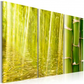 Kép Bamboo reflected on water