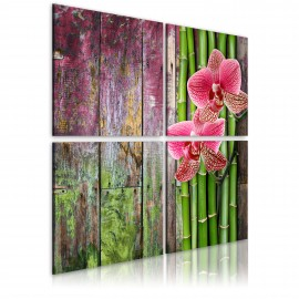 Kép Bamboo and orchid
