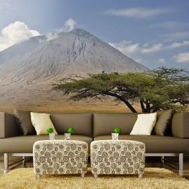 Fotótapéta Ol Doinyo Lengai Volcano Tanzánia, Afrika