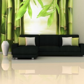 Fotótapéta Bamboo and zen