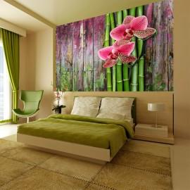 Fotótapéta Zen növények