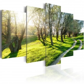 Kép May orchard