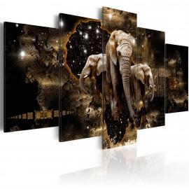 Kép Brown Elephants