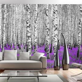 Fotótapéta Purple asylum