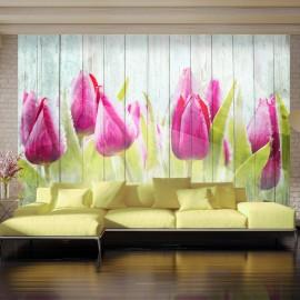 Fotótapéta Tulips on white wood