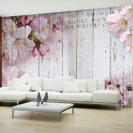Fotótapéta Apple Blossoms