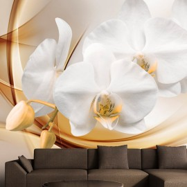 Fotótapéta Orchid blossom