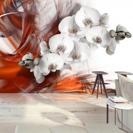 Fotótapéta Orchid on fire II