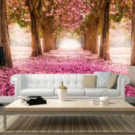 Fotótapéta Pink grove
