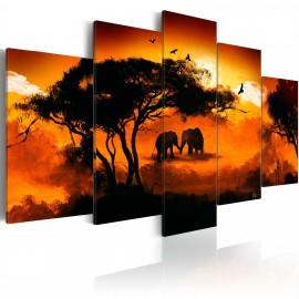 Kép Afrikai szerelem
