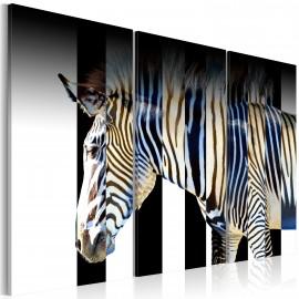 Kép Stripes