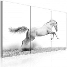 Kép A galloping horse
