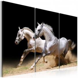 Kép Horses power and velocity