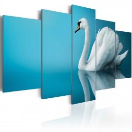 Kép A swan in blue