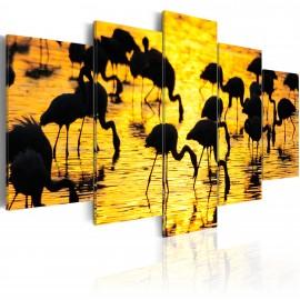 Kép Flamingos by the sea