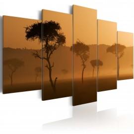 Kép Fog over a savannah
