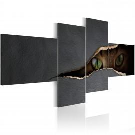 Kép Cat´s eyes
