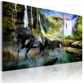 Kép Horse on the skyblue waterfall background