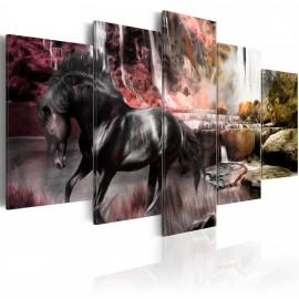 Kép Black horse on crimson sky background