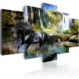 Kép Black horse on the background of paradise waterfall