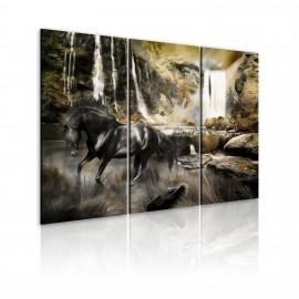 Kép Black horse and rocky waterfall