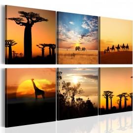 Kép African sceneries