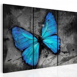 Kép The study of butterfly triptych