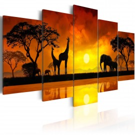 Kép Savanna sunset
