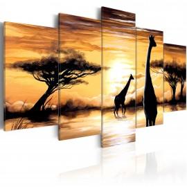 Kép Wild Africa